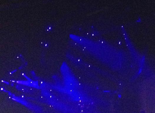 Phishlights